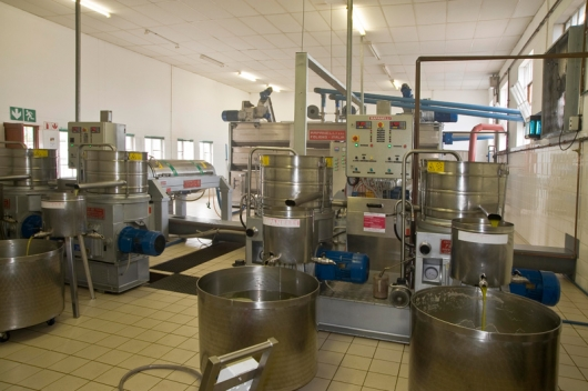 Olive Oil Extraction Systems